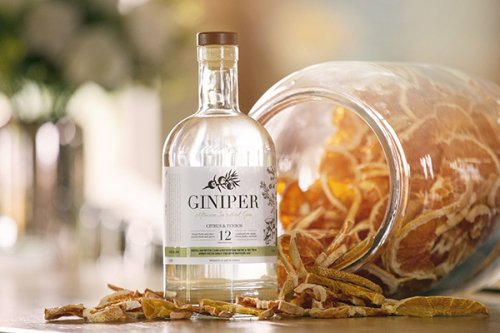 best citrus fynbos gin