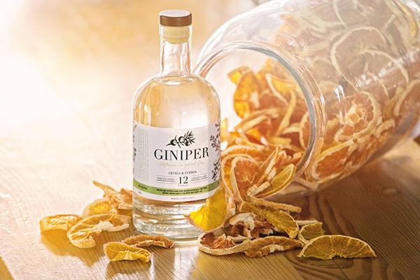 Giniper gin
